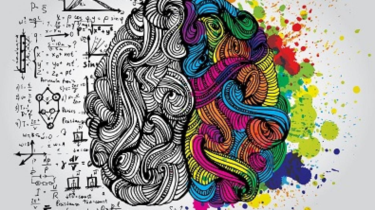 voce-tem-um-cerebro-racional-ou-emocional